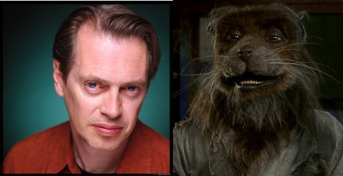Buscemi Splinter